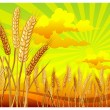 Landscape with wheat - Stock Vector