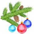 Christmas branch - Stock Vector