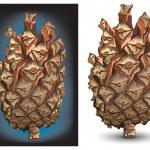 Pine cone — Stock Vector #2768834