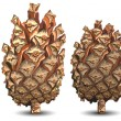 Four pine cone — Stockvectorbeeld