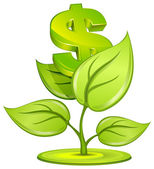 Dollar plant — Vector de stock