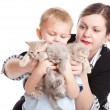Foto Stock: Child with kittens