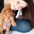 Stock Photo: Young girl with puply of Dogue de Bordeaux (French mastiff)