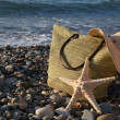 Stock Photo: Bonnet, bag and seastar