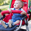 A baby is crying in the pram — Stock Photo #4880559