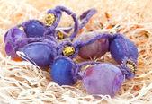 Purple beads. Jewelry — Stock Photo