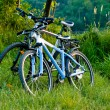 Bicycles parked near tha lake — Stock Photo