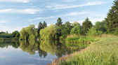 Panorama mirror lake with rushies — Stock Photo