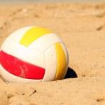 Kumda Voleybol — Stok fotoğraf