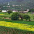 Stock Photo: Tibetlandscape