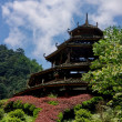 Ancient pagoda — Stock Photo #2921439