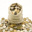 Bag with coins — Stock Photo #3857671