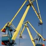 Two big port cranes working — Stock Photo #3153534