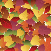 Background of autumn leaves — Stock Vector
