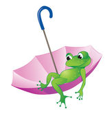 Frog and umbrella — Stock Vector