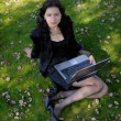 Young lady in a park with a laptop - Stock Photo