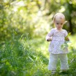 Little baby in a forest holding maples leaves — Stock Photo