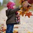 Baby taking a bunch of maple leaves — Stock Photo #3120256