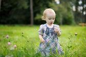 Kleines baby in einem feld klee — Stockfoto