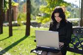 Ung dam med en bärbar dator i en park — Stockfoto