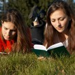 Girls reading the books on the lawn - Stock Photo