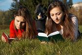 Meninas, lendo os livros no gramado — Fotografia Stock