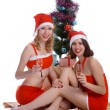 Celebrating Christmas — Stock Photo #3564954