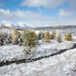Altai under snow — Stock fotografie