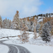 Altai under snow — Stock Photo #4288667