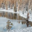 Altai under snow — Foto de Stock