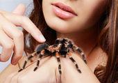Dziewczyna z pająk — Zdjęcie stockowe