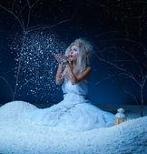 Buz perisi — Stok fotoğraf