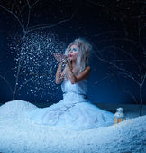 Frozen fairy — Foto Stock