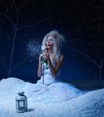 Frozen fairy with rose — Stock Photo