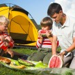 Family picnic — Stock Photo #2947049
