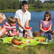 Family picnic — Stockfoto