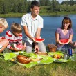 Family picnic — Stockfoto #2947055