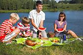 Family picnic — Stockfoto