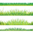Realistic summer grass - Stock Vector