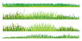 Realistic summer grass — Stock Vector