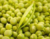 Green peas pods — Stock Photo