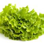 Salad leaves — Stock Photo #3381231