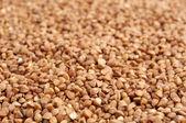 Buckwheats textury — Stock fotografie