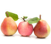 Apples and pears — Stock Photo