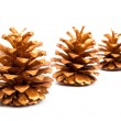 Gold cones — Stock Photo