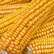 Royalty-Free Stock Photo: Golden corn