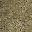 Royalty-Free Stock Photo: Wooden texture