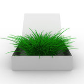 Open box with grass. Isolated 3D image — Stock Photo