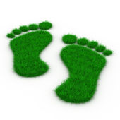 Trace foot from grass. Isolated 3D image — Stock Photo