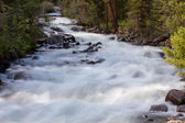 Mountain river. fast stream water. summer landscape — Stock Photo